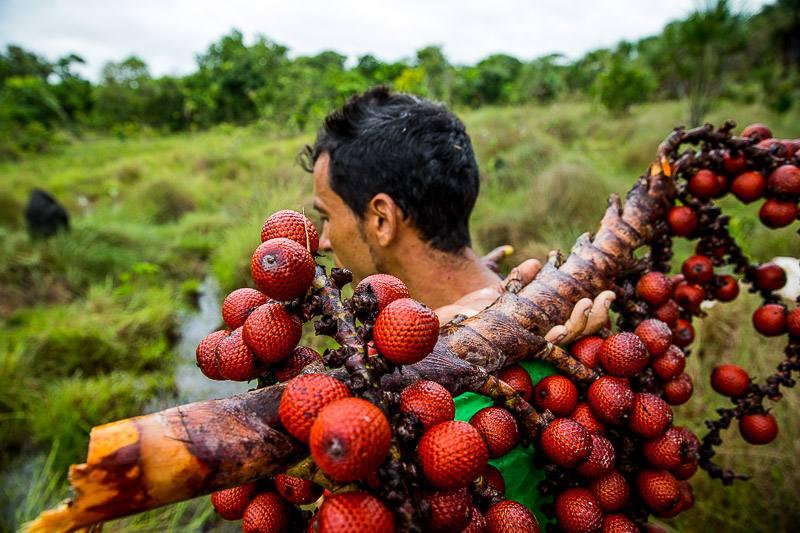 Así es cómo se vive y se cuida la Amazonía