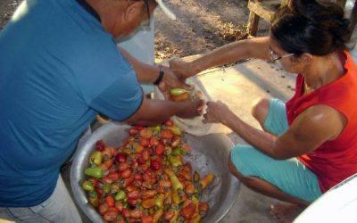 La iniciativa de lluita contra la pobresa que funciona