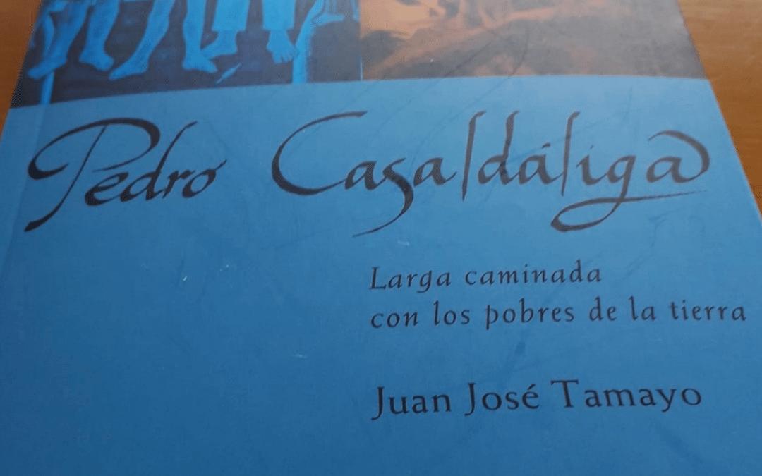 Casaldáliga: Teo-poeta de la liberación y espiritualidad contra-hegemónica