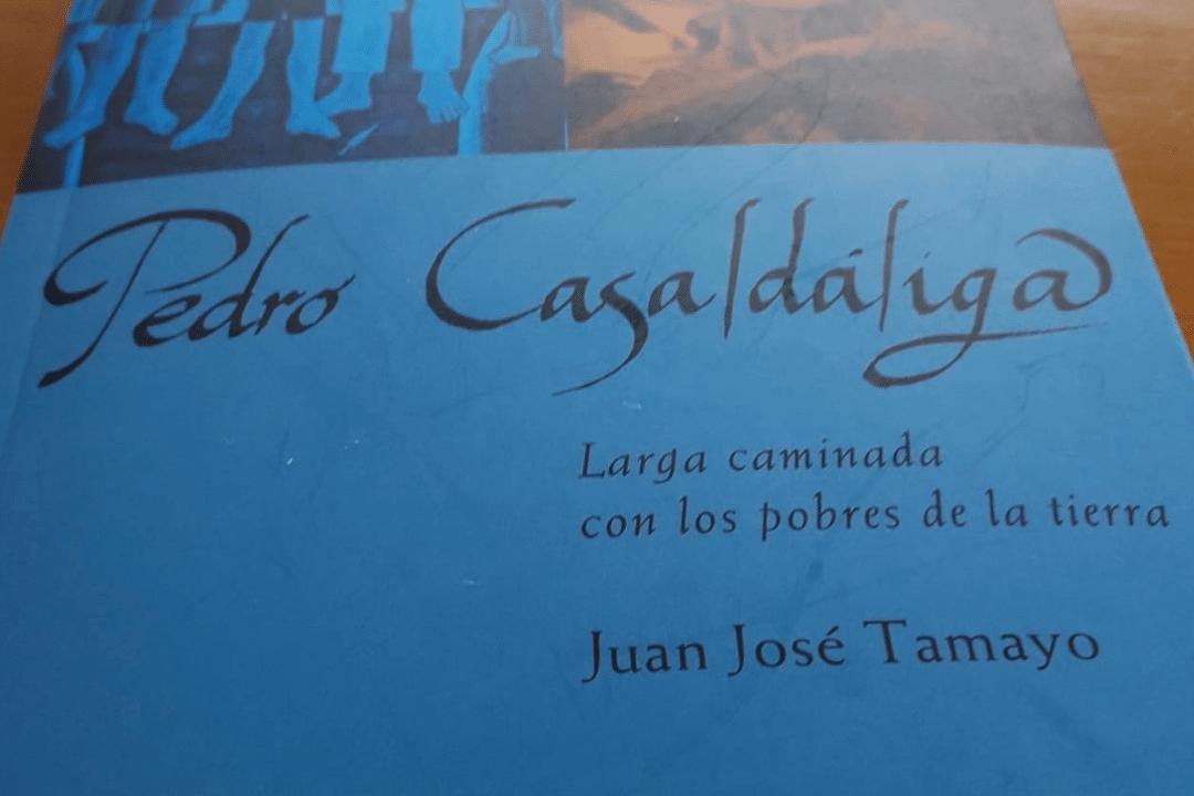 Libro sobre Casaldaliga de Tamayo